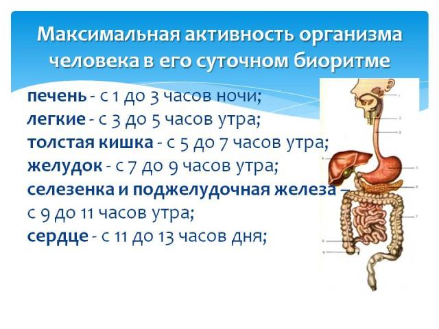 doc_zaporhron1