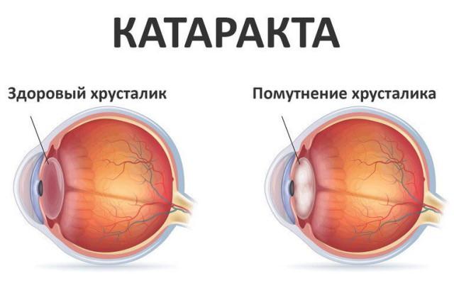 doc_dskjvzh8d9zvsv